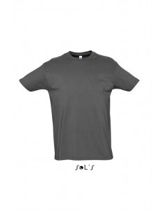 Camiseta Gris Plomo...